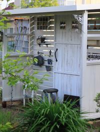 小屋の完成とさくらんぼ - ゆきなそう  猫とガーデニングの日記