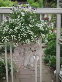 裏庭のお花たち - 小さな花アトリエ