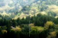 里山の春 - Illusion on the Borderline  II @へなちょこ魔術師