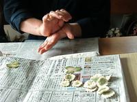 白ツメ草 - フィオレッタな日々 フィオレッタの創作ダイアリー