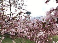 湯の川観光ホテル 祥苑(湯の川温泉) - せっかく行く海外旅行のために