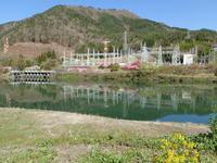 奥の桜と麺道2500km the first day - ジェンマとおっちゃんの日記2