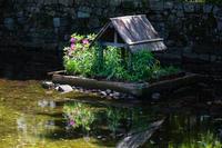 ツツジの咲く家 - 彩りの軌跡