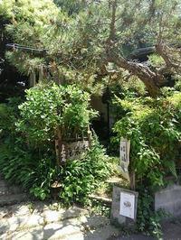 鎌倉路地フェスタ 最終日です - 和の暮らしを楽しむ -鎌倉 和楽庵-