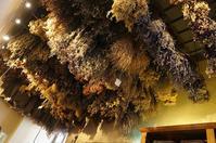 ハーブ博物館〜サンセポルクロ - フィレンツェ田舎生活便り2