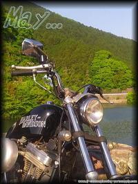 """『 皐月・・・ 』 - """"Live  to  like  carburetor"""""""