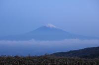 二泊三日の断食体験その2〜富士山を見に行きました〜 - 美鈴とトラと私とお庭