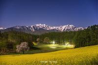 月夜の春 - o'night