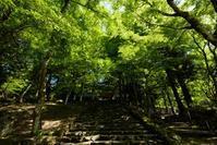 高源寺  - とりあえず撮ってみました
