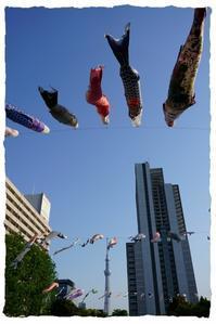 東京スカイツリー - とまれみよ