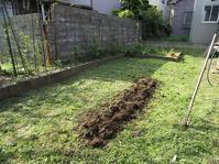 夏野菜ちょっとだけ植えた - ごまめのつぶやき