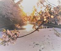 やがて日は沈む - 夢・ファンダンゴ