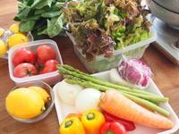 初夏の野菜たっぷりおもてなしごはん - 子どもと楽しむ食時間