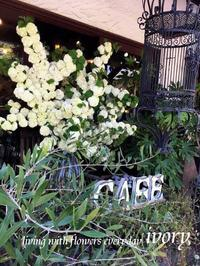『GW後半スタート〜♬』 -  Flower and cafe 花空間 ivory (アイボリー)