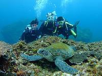 今日はリピーターさん&インターナショナル♪ - 八丈島ダイビングサービス カナロアへようこそ!