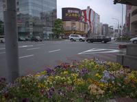 花咲く街角180503 #1 - LOOSE