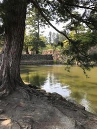 ゴールデンウィーク、矢田町の真友会で - 奈良 京都 松江。 国際文化観光都市  松江市議会議員 貴谷麻以  きたにまい