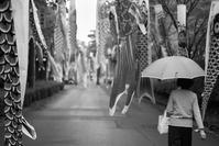 五月雨のしだれ鯉のぼり - Film&Gasoline