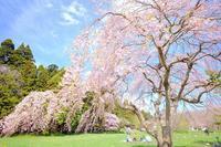 5月4日 - Pastel color