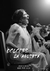DOLORES LA AGUJETA canta en KOFU - フラメンコ衣装 Viento en popa