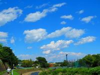 青空と綿雲・アゲハチョウ - 気ままな日記