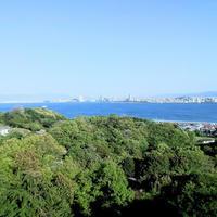 おいしい季節がやってきた。 - 能古島の歩き方 〈今日の島暮らし〉