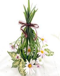 ミスカンサスで花あそび - **おやつのお花*   きれい 可愛い いとおしいをデザインしましょう♪