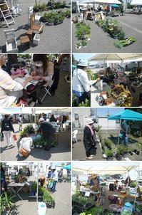 ウィスタdeフェスタ~緑のフリーマーケット - natural garden~ shueの庭いじりと日々の覚書き