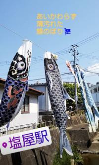 Jackman ポケTee - 【Tapir Diary】神戸のセレクトショップ『タピア』のブログです