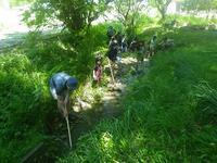こどもの日は「水路で生きものを探そう!」 - 千葉県いすみ環境と文化のさとセンター