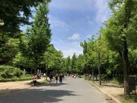 GW後半初日は久々の大阪城公園でジョギング 2018.5.3 - ちゃーぼー日記