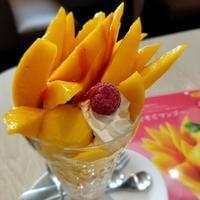 デニーズ佐久平店*ふりそそぐマンゴー食べました♪ - ぴきょログ~軽井沢でぐーたら生活~