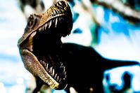 恐竜サバイバル - かぜとつゆ
