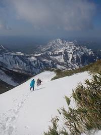 吹雪の白山禅定道と春爛漫大日ケ岳ハイキング - 山にでかける日