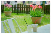 ミルクティーとレモンシャーベット。 - Yuruyuru Photograph