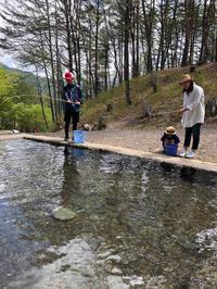 GW - 三楽 sanraku 造園設計・施工・管理 樹木樹勢診断・治療