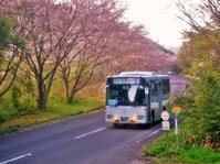 小瀬戸野(こせどの) - さつませんだいバスみち散歩