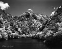 新緑のダム湖(赤外写真編) - 癒しの空間