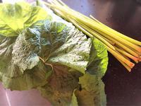 庭のふきでふきの葉の佃煮とふきと人参とお揚げの煮物 - Coucou a table!      クク アターブル!
