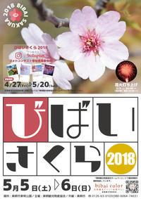 びばいさくら 2018/美唄市 - 貧乏なりに食べ歩く 第二幕