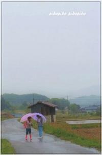 Girls in the rain - 今が一番