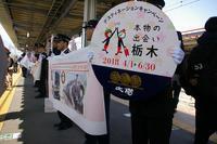 今市駅での歓迎-本物の出会い栃木号 - Joh3の気まぐれ鉄道日記