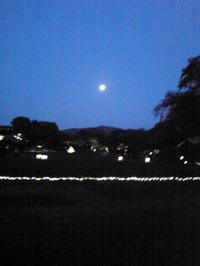 後楽園 幻想庭園 - 光匠園の庭造り日記
