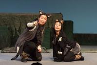「ねこはしる」舞台写真4 - 劇団新芸座ブログ