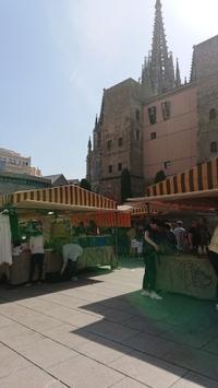 バルセロナのカテドラル前でアンティーク市。 - あ・こ・が・れ