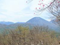 薬師岳~夕日岳 新緑と躑躅を楽しんで  2018.5.6(日) - 心のまま、足の向くまま・・・