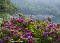 奥琵琶湖方面へ - カンちゃんの写真いろいろ