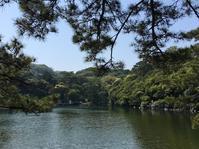 明神池で遊ぶ - ホリー・ゴライトリーな日々