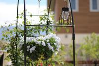 雑貨をプラスしてみた - my small garden~sugar plum~
