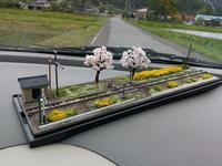 Nジオラマ、桜と菜の花満開のローカル線 - e-stationショップブログ